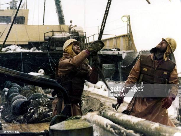 Rostock / Fischfang / Hochseefischerei / Februar 1977 / Zubringer Trawler Philipp Mueller auf Fischfang im Nordwestatlantik bei Labrador Kabeljau und...