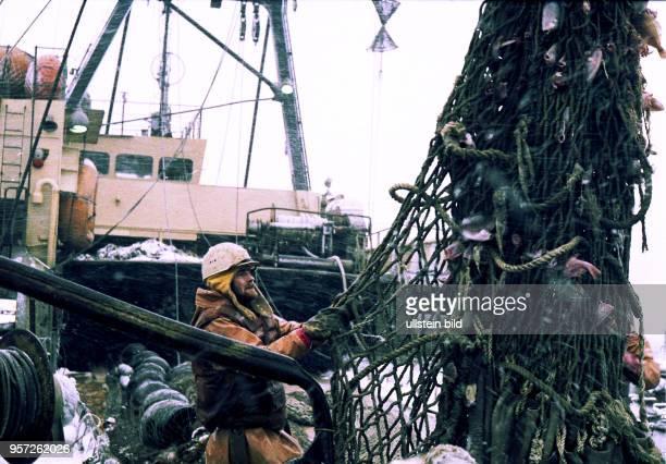 Rostock / Fischfang / Hochseefischerei / Februar 1977 / Zubringer Trawler Philipp Mueller auf Fischfang im Nordwestatlantik bei Labrador Fangnetz und...
