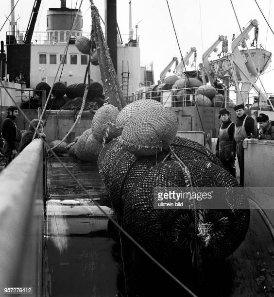 Rostock / Fischfang / Hochseefischerei / Januar 1968 / Steertuebernahme an Deck des Transportund Verarbeitungsschiff Junge Garde Kabeljau und...