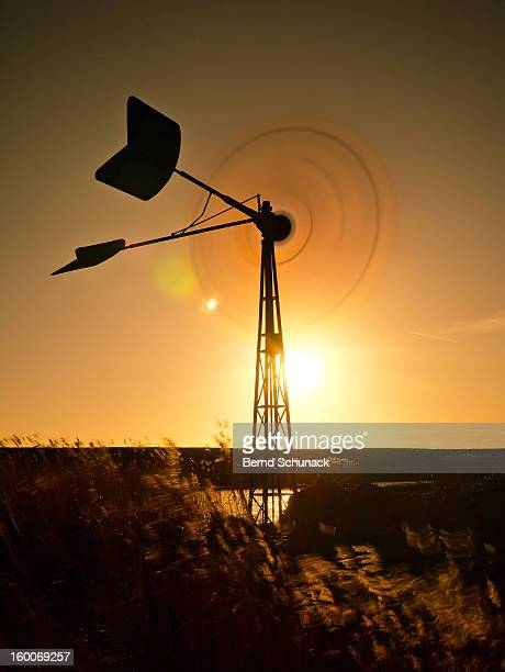 Rotating old wind wheel in backlight, surrounded by swaying gras.Located on the Baltic Sea coast in Fehmarn, Germany