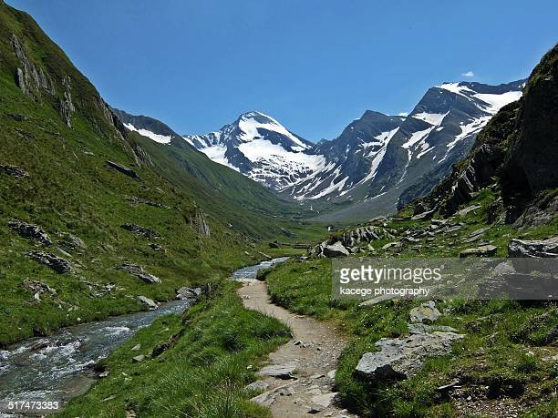 rotspitze, central alps - escarpment stock pictures, royalty-free photos & images