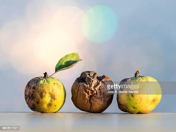 Rotten apples