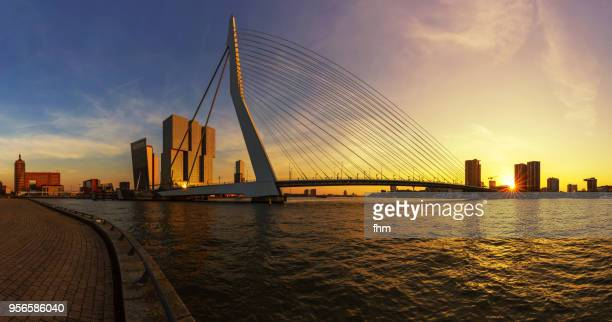 rotterdam skyline at sunset with erasmusbridge (southholland, netherlands) - hollande méridionale photos et images de collection