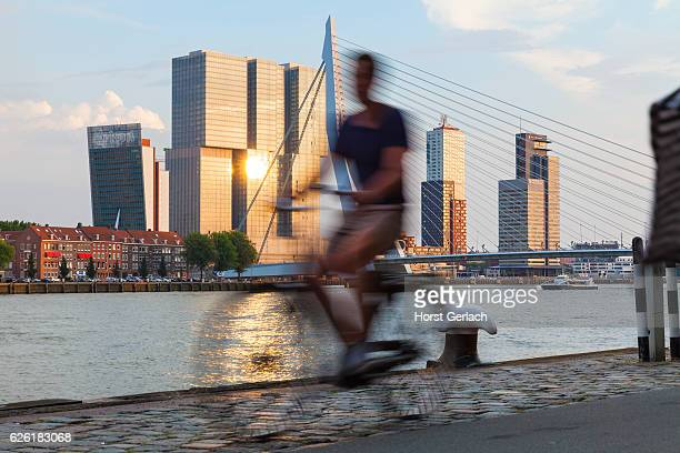 rotterdam skyline, netherlands - rotterdam stock pictures, royalty-free photos & images