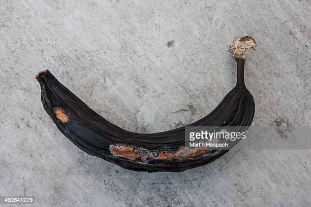 rotting banana, close-up - rot stock photos and pictures