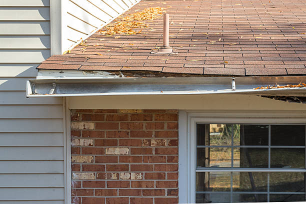 rotting facia board - gutter cleaning stock pictures, royalty-free photos & images