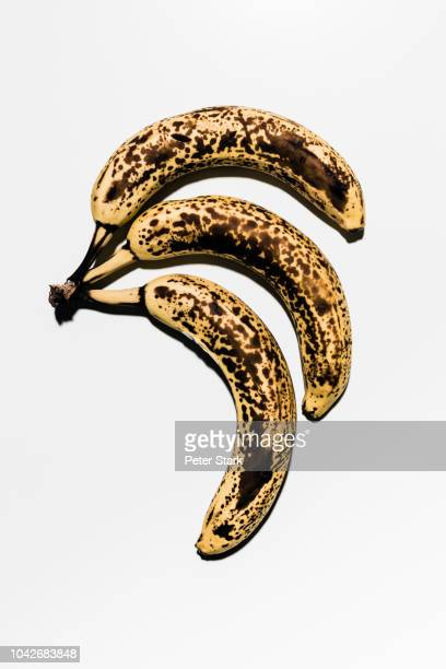 Rotting, ripe bananas against white background