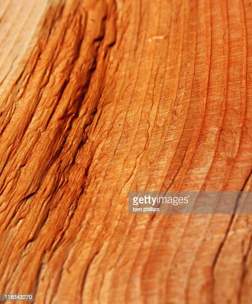 Cedar superficie áspera