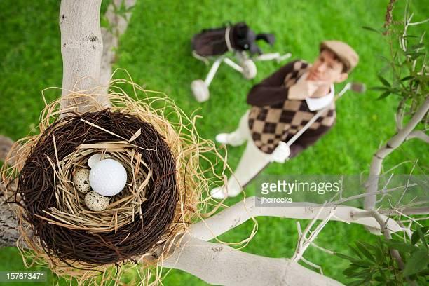 rough liegen - golf lustig stock-fotos und bilder