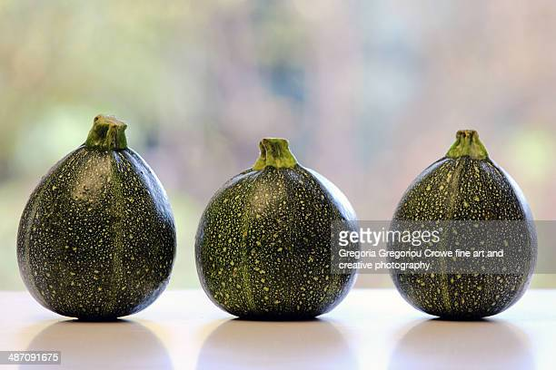 round courgettes - gregoria gregoriou crowe fine art and creative photography ストックフォトと画像