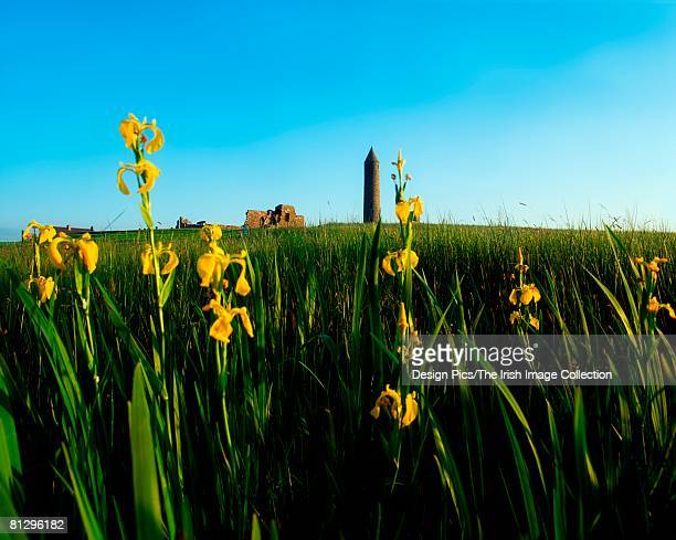 round tower, devenish island, lower lough erne, co fermanagh, ireland - lough erne stock photos and pictures