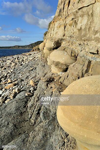 Rounded nodules on the beach near Osmington Mills, made of calcite-cemented sandstone, come from the Bencliff Grit Formation along the Jurassic...