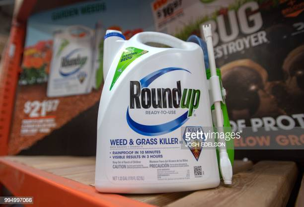 Roundup products are seen for sale at a hardware store in San Rafael California on July 2018 A lawyer for a California groundskeeper dying of cancer...