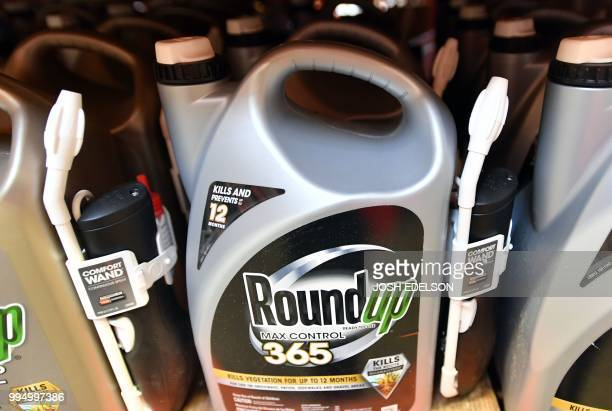 Roundup products are seen for sale at a store in San Rafael California on July 2018 A lawyer for a California groundskeeper dying of cancer took aim...