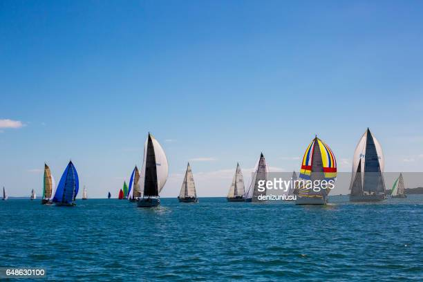 route 66 coastal sailing race - whangarei heads stock pictures, royalty-free photos & images
