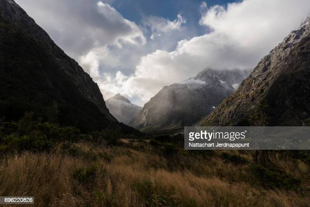 "route to milford sound ""monkey creek"" amazing atmosphere of hollyford river valley - southland new zealand stock pictures, royalty-free photos & images"
