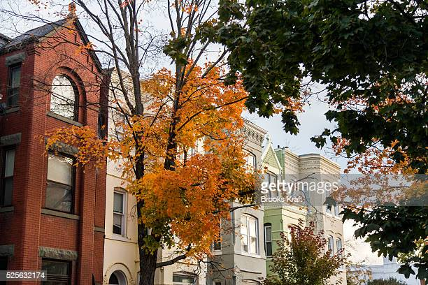 Row houses on a residential street in Georgetown a historic neighborhood located in northwest Washington DC situated along the Potomac River It is...