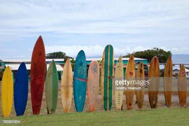 row of antique surfboards along a fence - timothy hearsum stockfoto's en -beelden