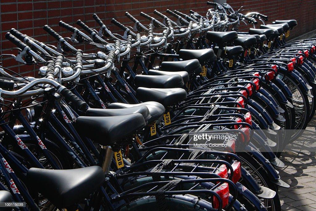 Row of bicycles : Stock Photo