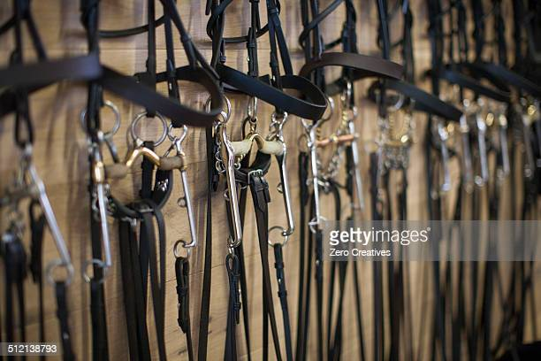row of bridles hanging up in stables - 手綱 ストックフォトと画像