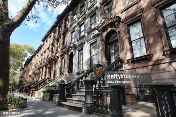 row of brownstones in new york city - piedra caliza fotografías e imágenes de stock