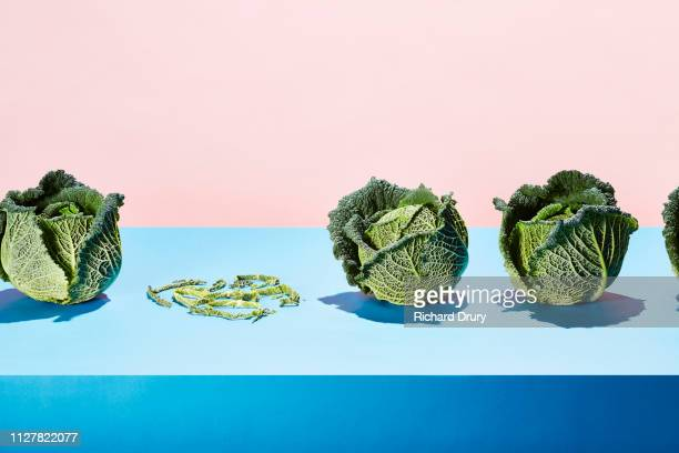 a row of cabbages with the remains of one shredded cabbage - glitch art stock-fotos und bilder