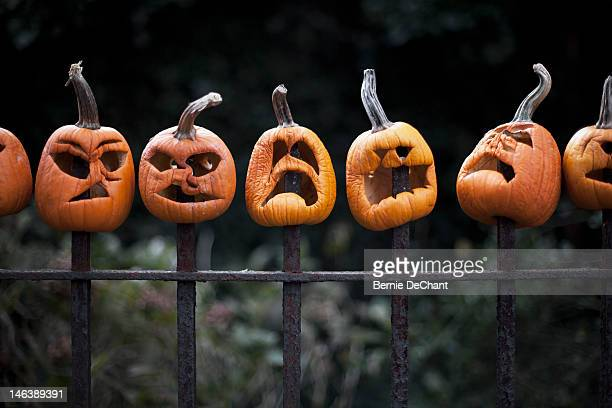 row of carved pumpkins impaled on fence - scary pumpkin faces stock photos and pictures