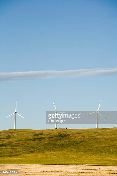 A row of clean energy wind turbines in Montana.