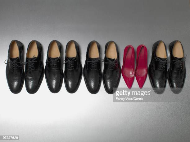 Row of Dress Shoes