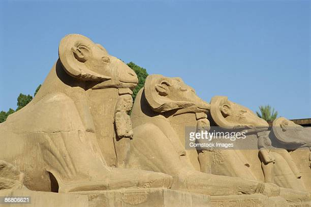 row of egyptian sphinxes - luxor thebes stock pictures, royalty-free photos & images