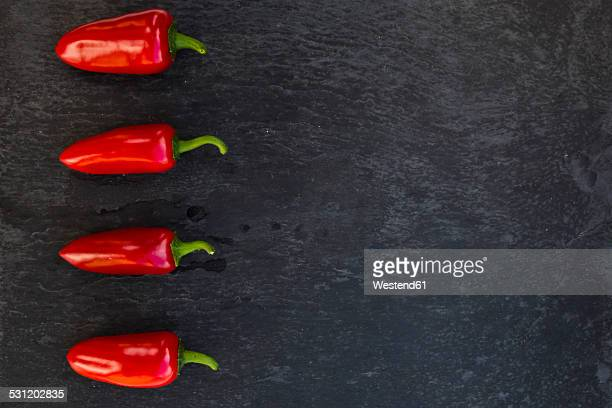 Row of four jalapenos, Capsicum annuum, on slate