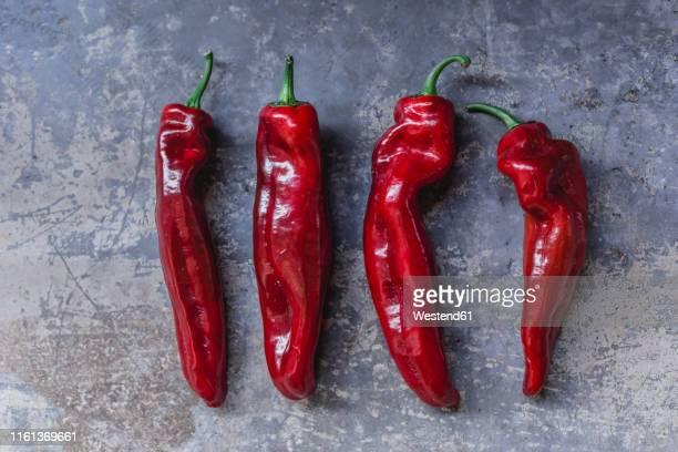 row of four red pointed peppers - scharfe schoten stock-fotos und bilder