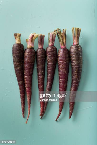 Row Of Fresh Purple Carrots.