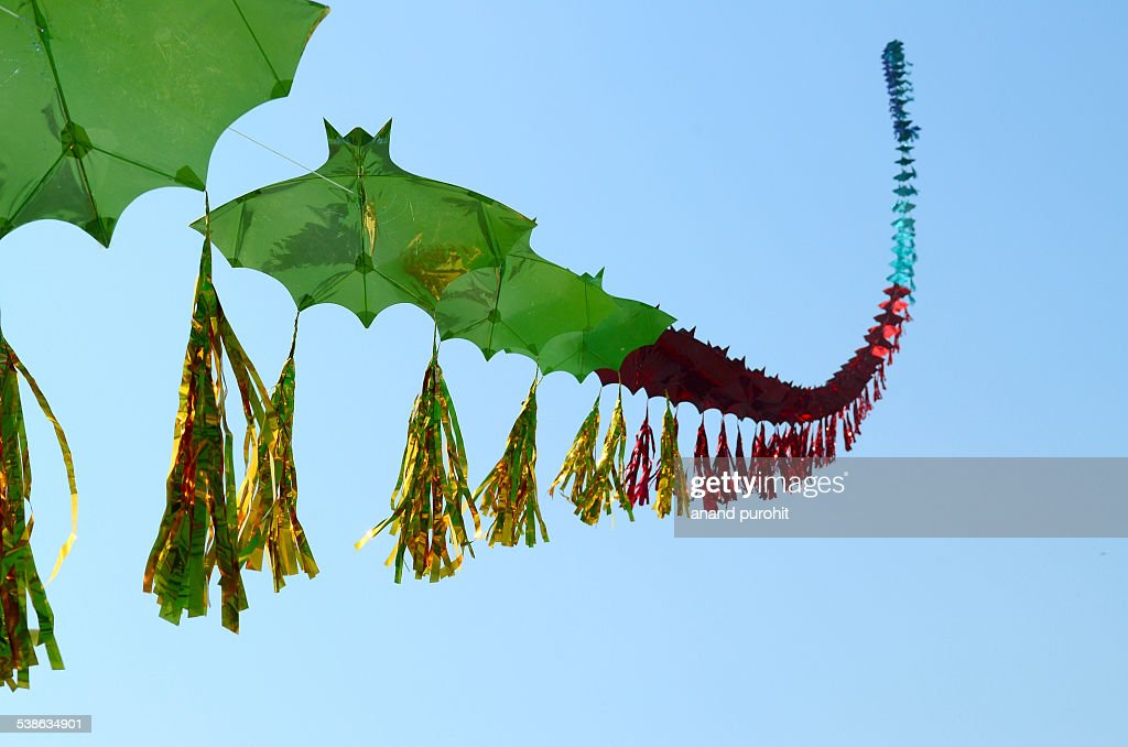 Row of Kites, Gujarat, India : ストックフォト