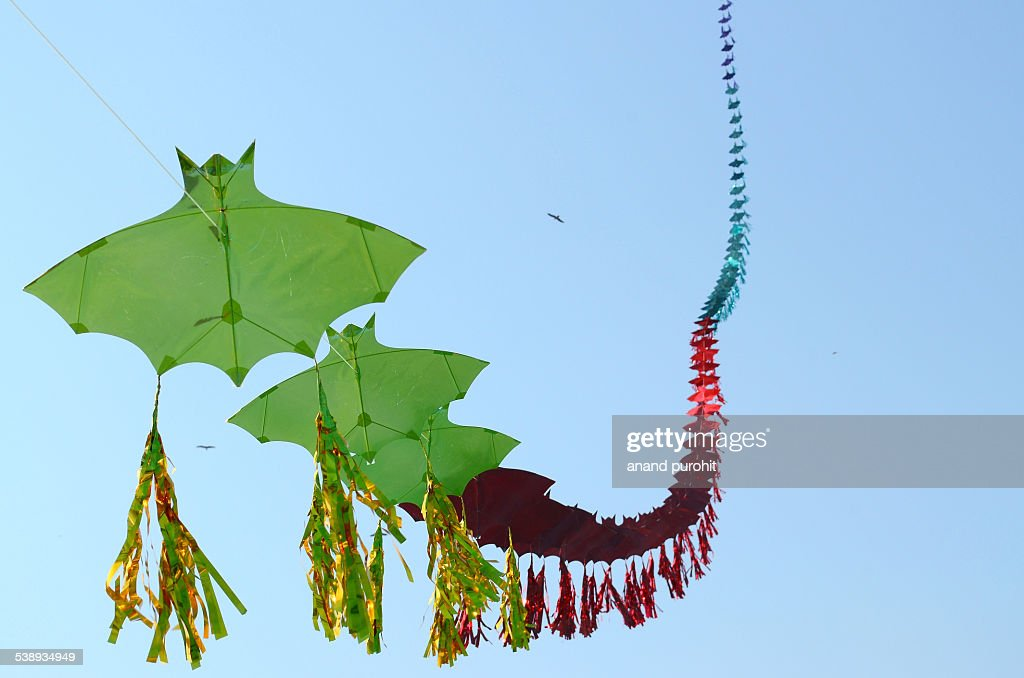 Row of kites, Gujarat, India : Stock Photo