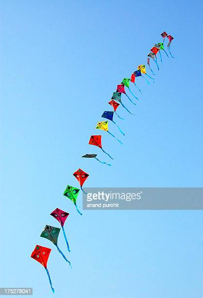 Row of Kites-2