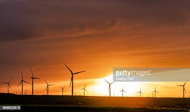 A row of modern wind turbines during a brilliant sunset.