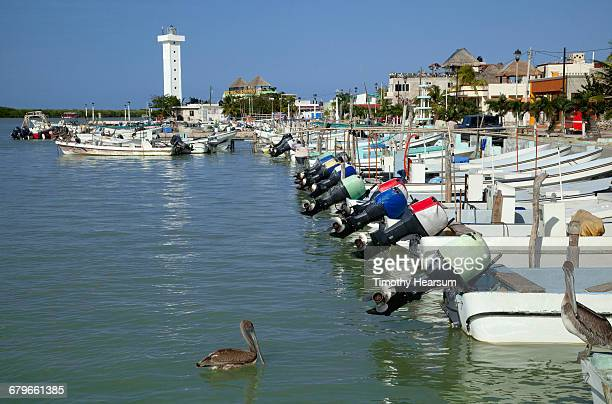 row of motor boats; town beyond - timothy hearsum stock photos and pictures