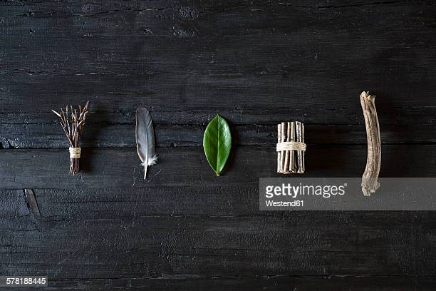 Row of organic natural material on black wood