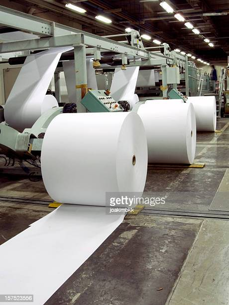 Row of paper rolls for print in a printing factory