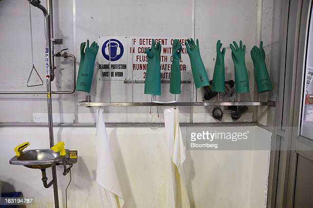 A row of rubber gloves dry on racks at the Tasmanian Heritage cheese plant operated by Kirin Holdings Co's Lion unit in Burnie Tasmania Australia on...