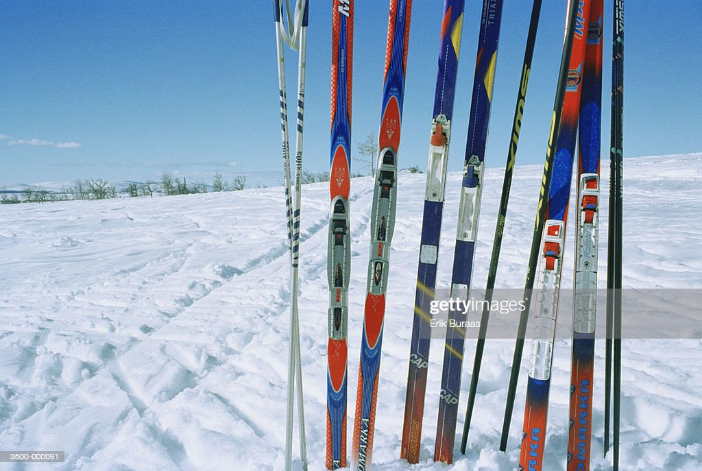Row of Skis in Snow : ストックフォト