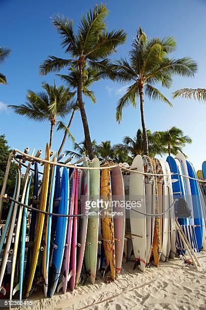 row of surfboards on beach, waikiki, oahu, hawaii, usa - waikiki stock pictures, royalty-free photos & images
