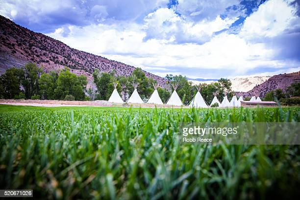 a row of teepee tents in a grass field at a camp in the colorado mountains - robb reece stock pictures, royalty-free photos & images