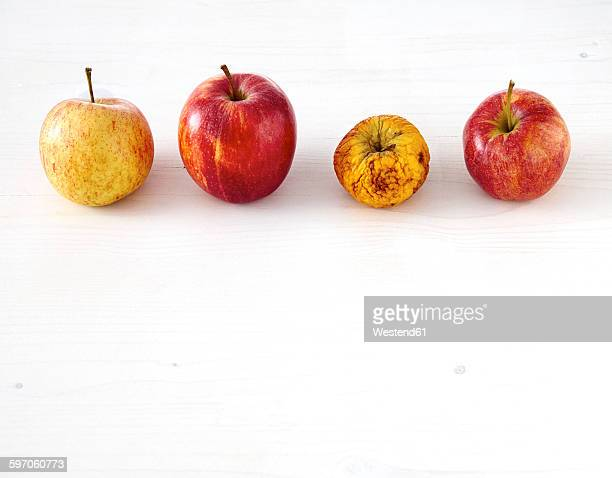Row of three fresh apples and a shrivelled one on white wood