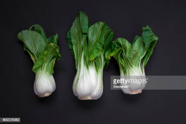 Row of three pak choi on black background