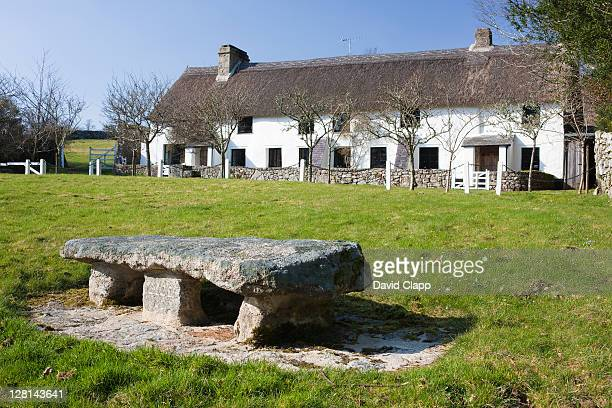 row of traditional thatched cottages and a stone seat made of granite commemorating the year 2000, manaton, dartmoor, devon, england uk - 2000 2009 stock pictures, royalty-free photos & images
