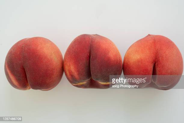 a row of white peaches on white surface - buttock photos stock pictures, royalty-free photos & images