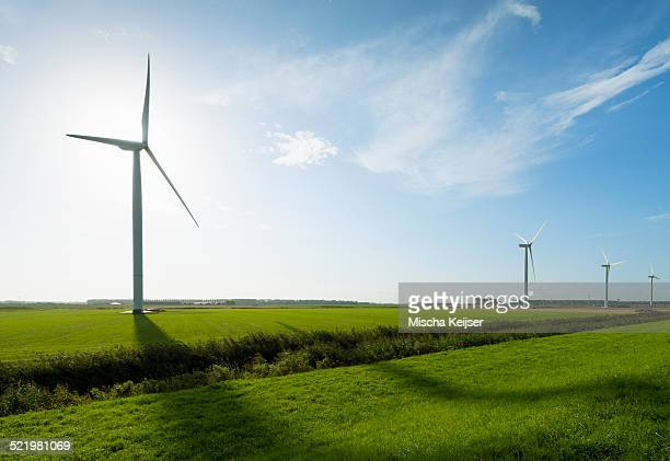 Row of wind turbines in front of sunrise in field landscape, Rilland, Zeeland, the Netherlands