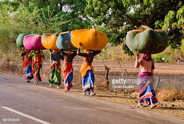 CONTENT] Row of women wearing colorful saris walking with large bundles of grass or hay on their heads to feed their cows people saree traditional...
